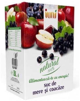 Suc Natural De Mere Si Coacaze 3L