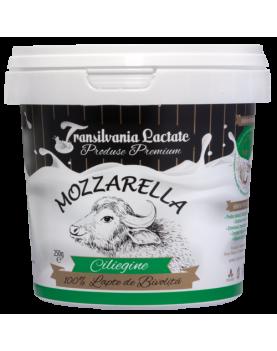 Mozzarella proaspata din lapte de bivolita